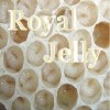 LEAH BROOKE – Royal Jelly
